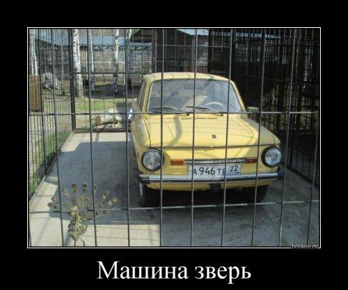 1463985208_demotivatory.jpg
