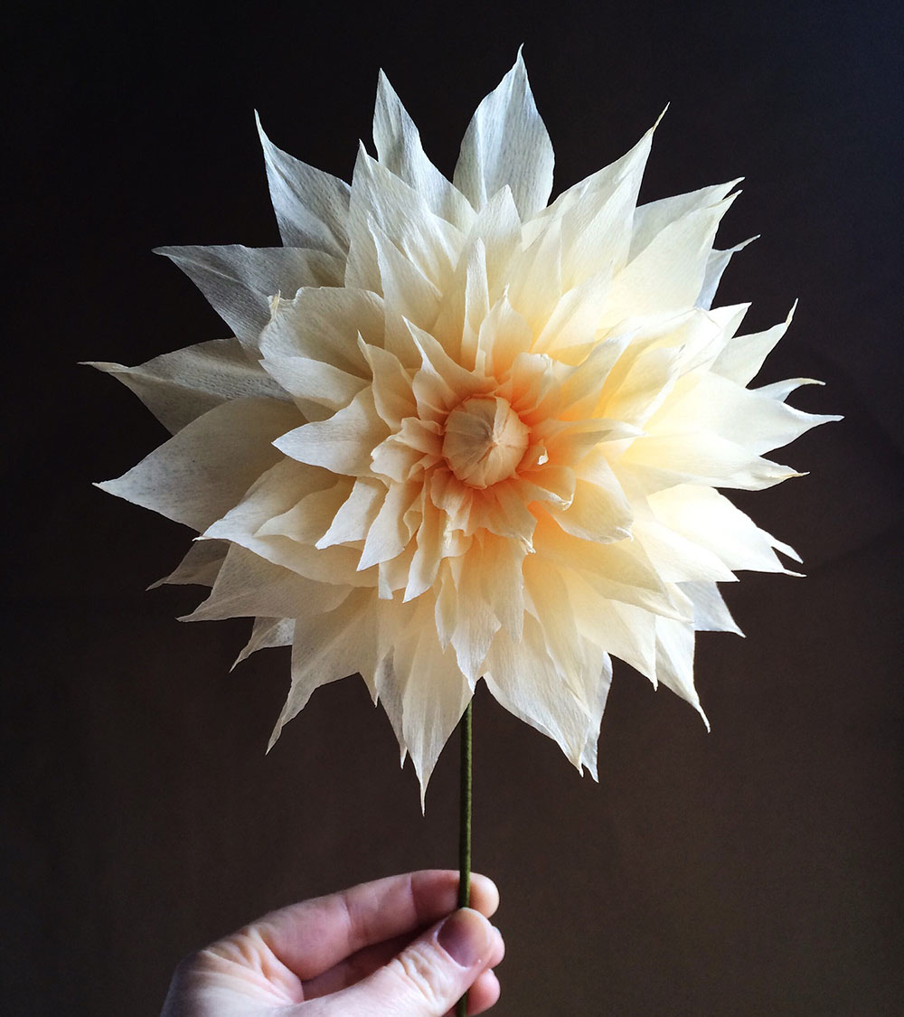 Unusual Paper Flower Concepts by Kate Alarcon