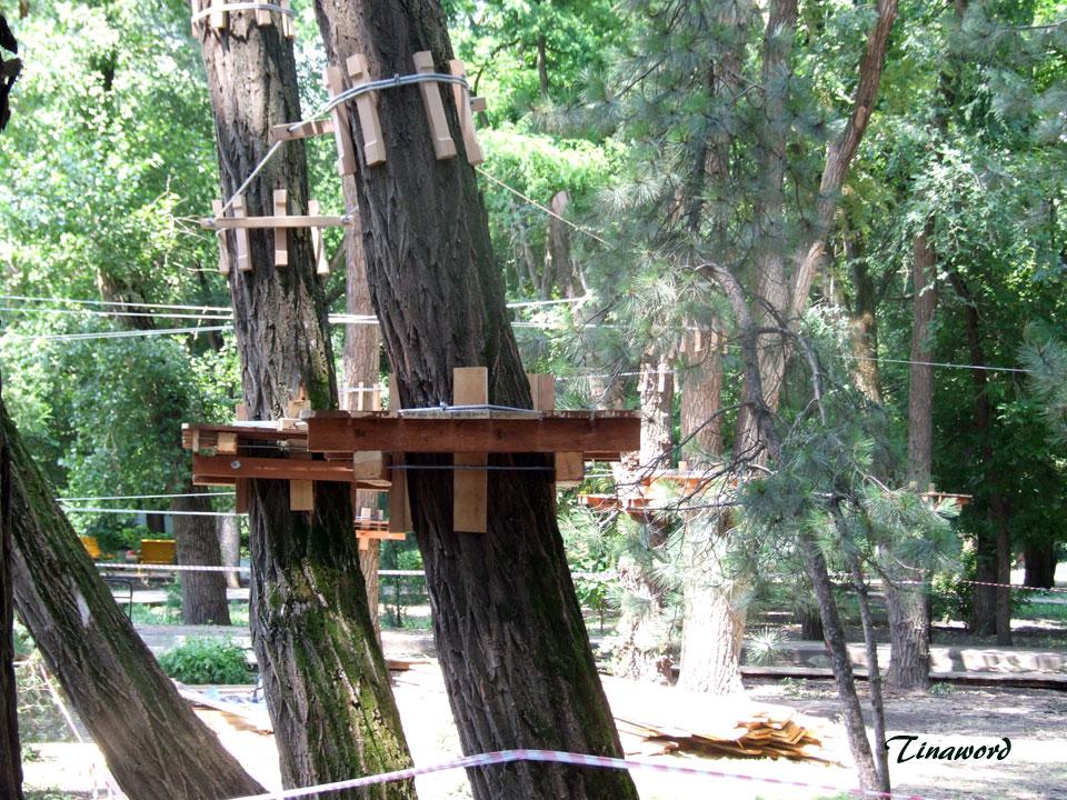 веревочный-парк-1.jpg