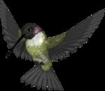 Lacarolita_My Fantasy Bird1.png