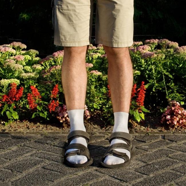 © 360nobs.com  Фото на превью aliexpress.com , thejeansblog.com По материалам notable.ca , the