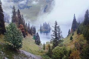 островок в тумане
