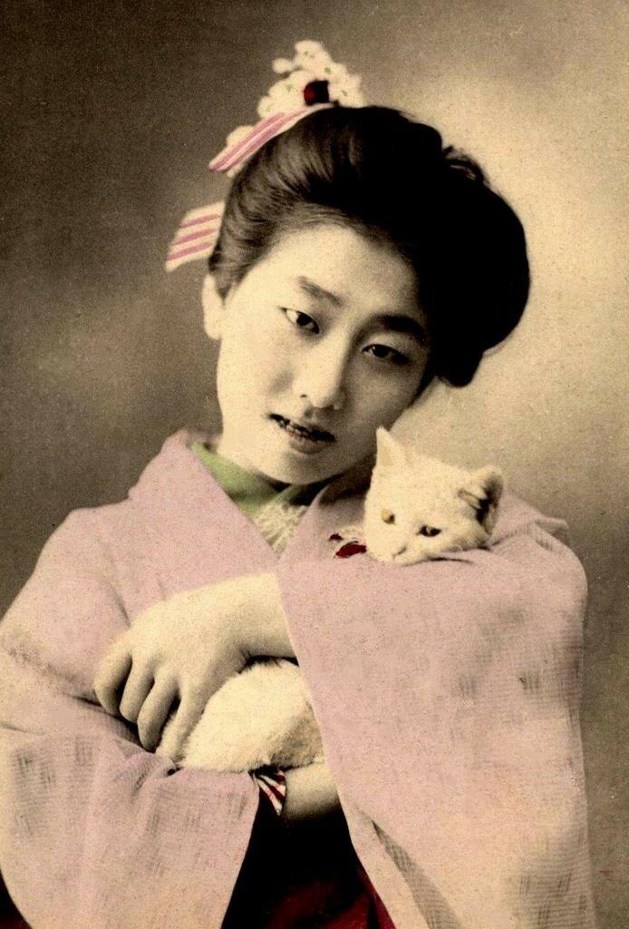 Гейша и ее кот