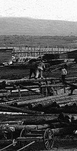 Магнитогорский совхоз. Общий вид центральной усадьбы. 1930