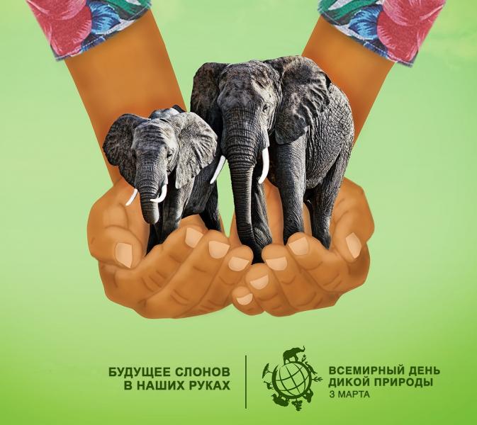Всемирный день дикой природы. 3 марта