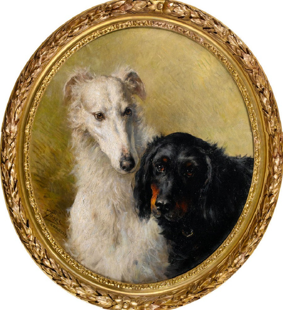 Portrait of a Borzoi and a Gordon setter