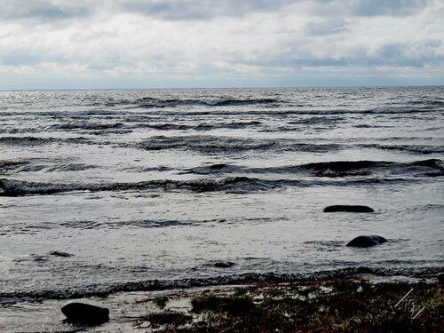 Финский залив осенний