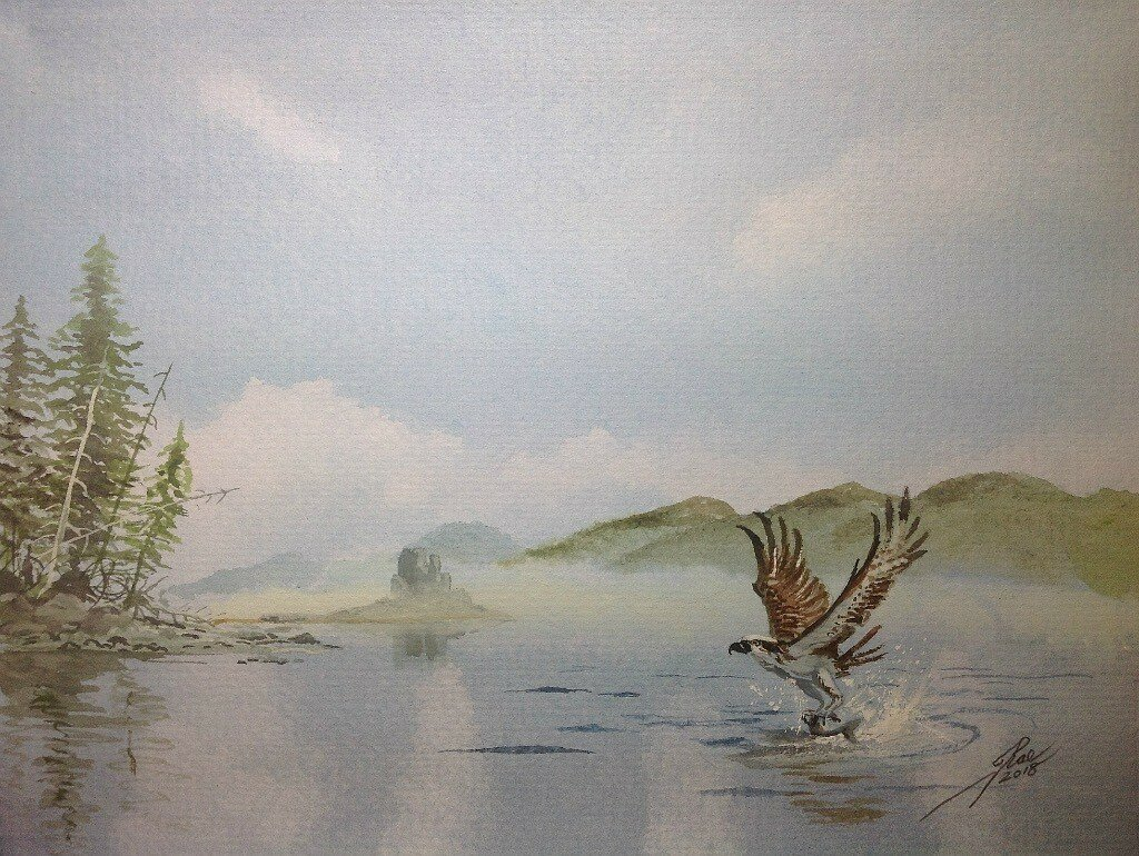 """Using the same basic scene, you can change the story that the painting tells. As well as practicing landscapes, wildlife, Aviation and """"sport""""."""