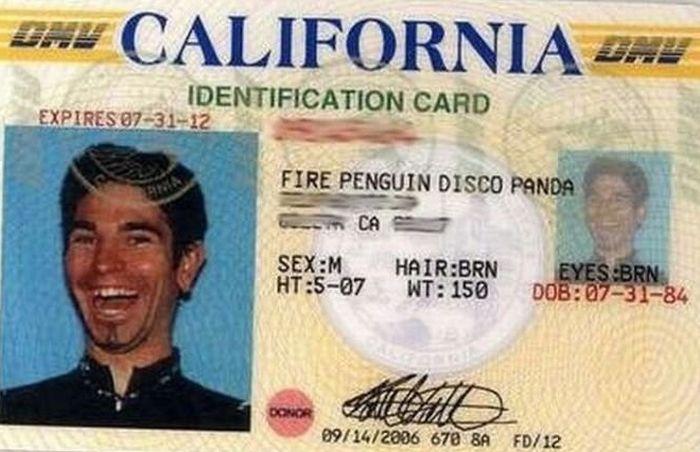 Недоволен своим именем? Смешные паспорта и документы (33 фото)