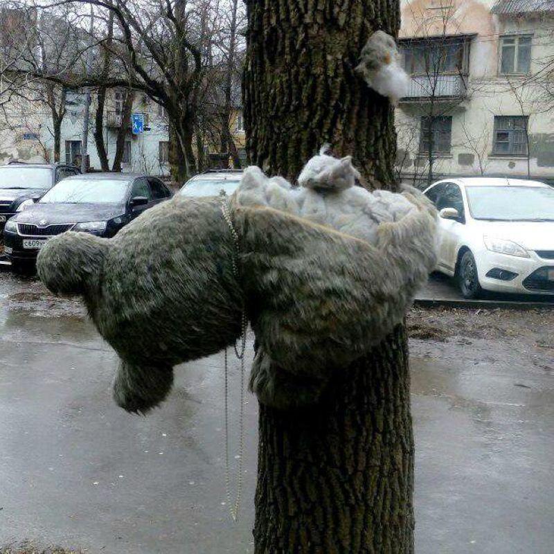 Когда ты хотел быть декоратором в фильмах ужасов, но работаешь в Ростовском ЖЭКе