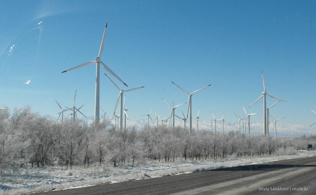 Ветряные мельницы на Кордае