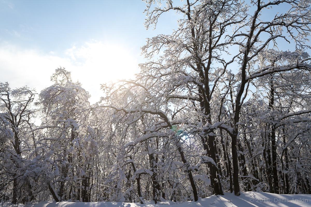Зима кумысная поляна фото 2
