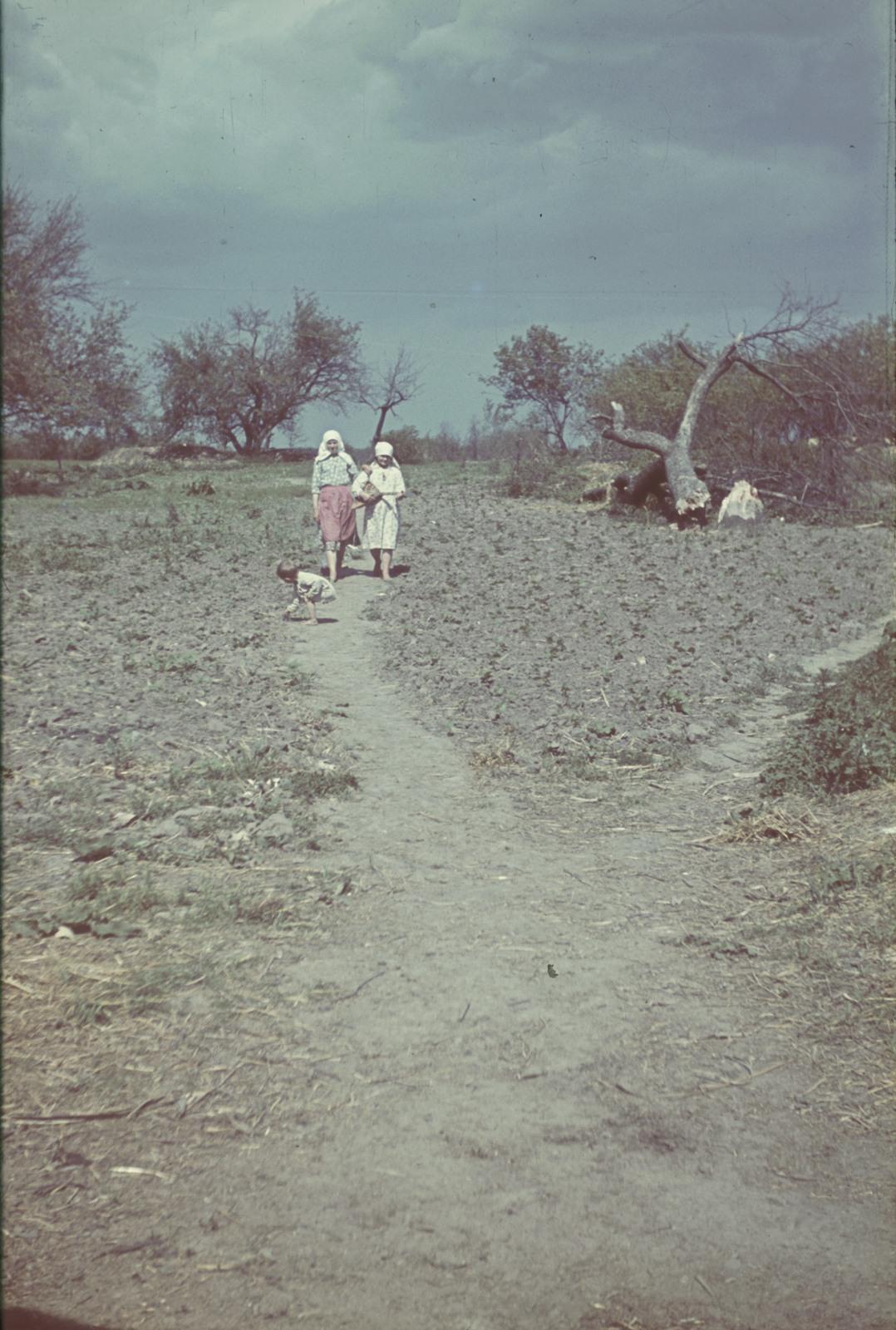 Девушки с балалайкой на грунтовой дороге