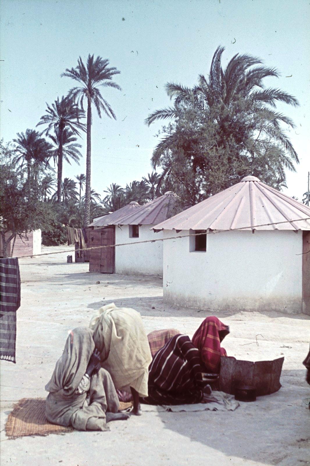 Группа местных жителей перед хижинами под пальмами, провинция Фессан