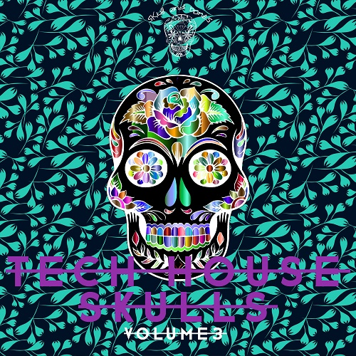 VA - Tech House Skulls, Vol. 3 (2018)