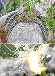 funny-photoshop-battle-winners-210-5a639857abf0c__700.jpg