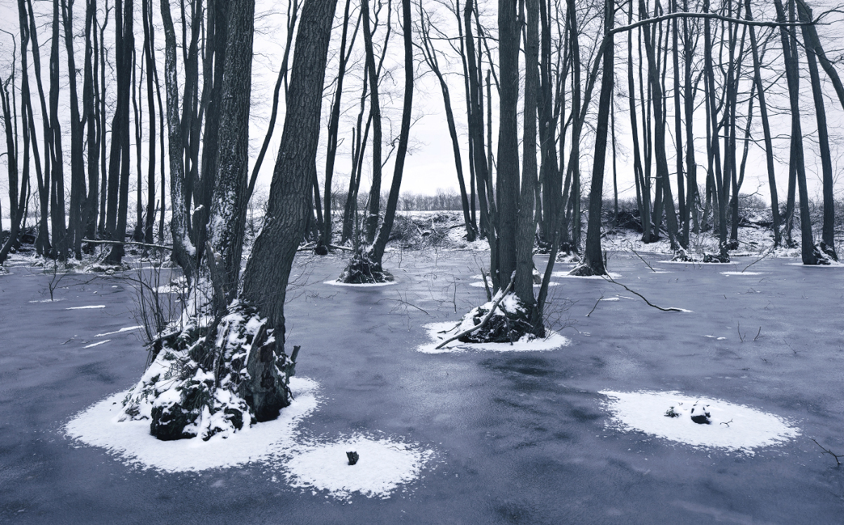 Frozen Landscapes Tell a Winter's Tale in New Photographs by Kilian Schonberger