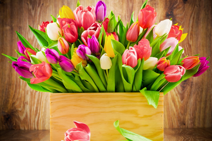 cveti-rozi-tulpani-k-8-marta-3.jpg