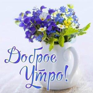 https://img-fotki.yandex.ru/get/1023858/131884990.108/0_174db2_46e90801_M.jpg