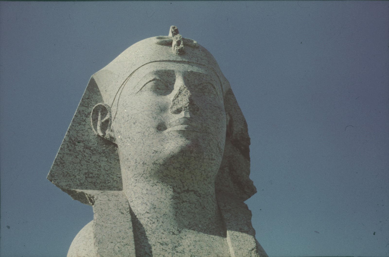 Александрия. Голова сфинкса возле Александрийского столпа (Колонна Помпея)