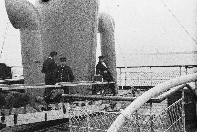 Пассажирка с собакой и дорожной сумкой и два члена экипажа на верхней палубе