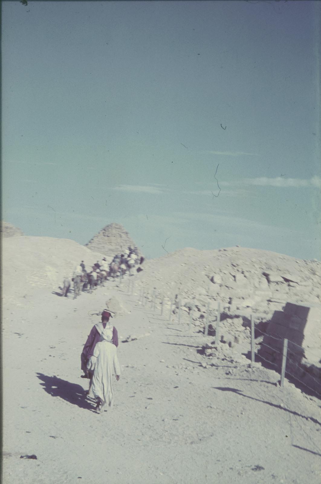 Гиза. Караван по пути к пирамидам