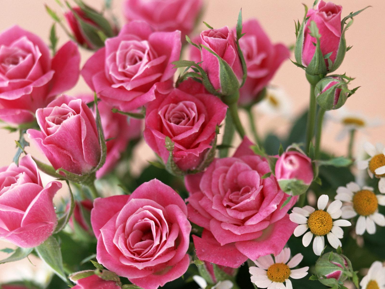 С Днем налоговой полиции. Розы с ромашками для вас