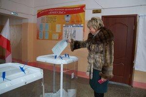 Выборы Гаранина