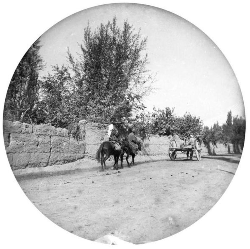 Верховая езда на дороге между старым городом и русской частью Ташкента