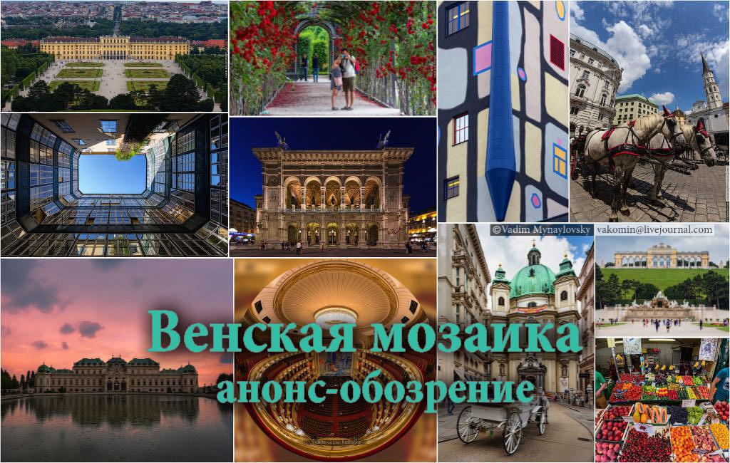 Венская мозаика 2016 - первый фотосрез или снятие сливок
