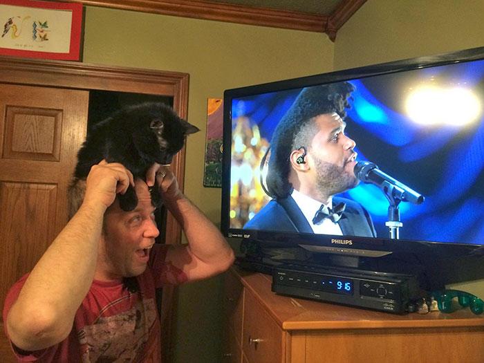 Солист The Weeknd или этот мужчина с котом?