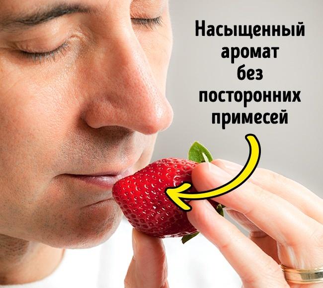 5 признаков, по которым вкусную клубнику можно отличить от «пластиковой» (5 фото)