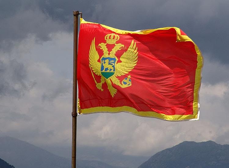 Черногория запросит озадержании жителя России Шишмакова