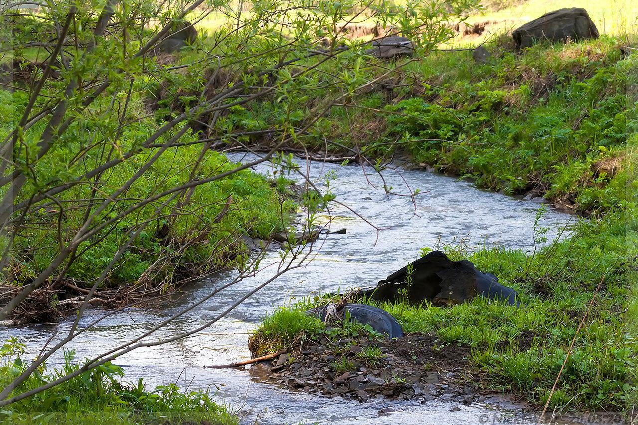 речушка Каменушка (© NickFW - 20.05.2017)