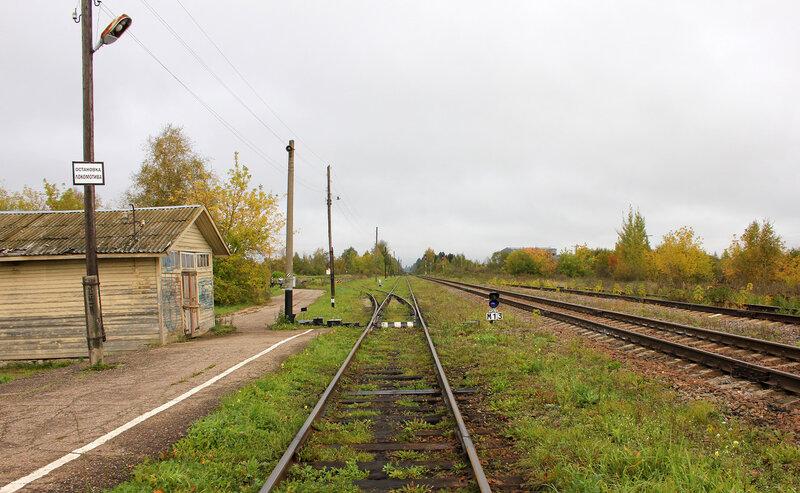 Станция Кесова гора, платформа, боковой путь и подъездной. Вид на Сонково