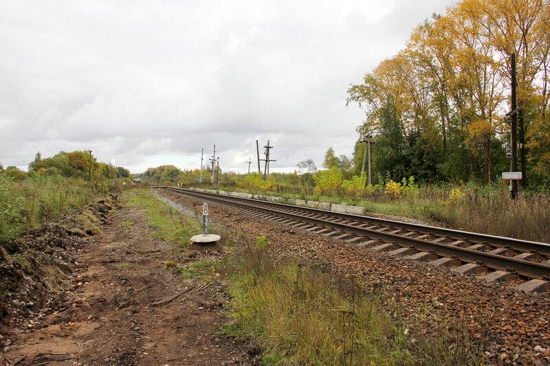 Платформа Сменово. Слева видны остатки деревянных шпал бокового пути, вид на Сонково