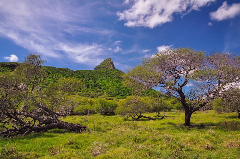 КАК Я ОТДОХНУЛ - ТИМОТИ ОТДЫХАЕТ! ЛУЧШИЙ ОТПУСК В МОЕЙ ЖИЗНИ. АНОНС ЧЕТЫРЕХ ТЫСЯЧ ПОСТОВ. Mauritius-(11).jpg