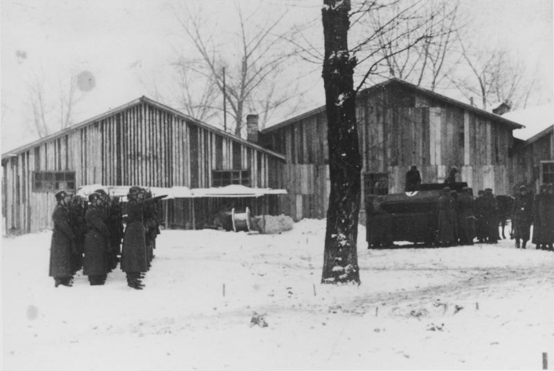 Добрая, тыловая, мирная...служба в концлагере уничтожения - Аушвиц. ( 70 фото ) RetrieveAsset (48).jpg