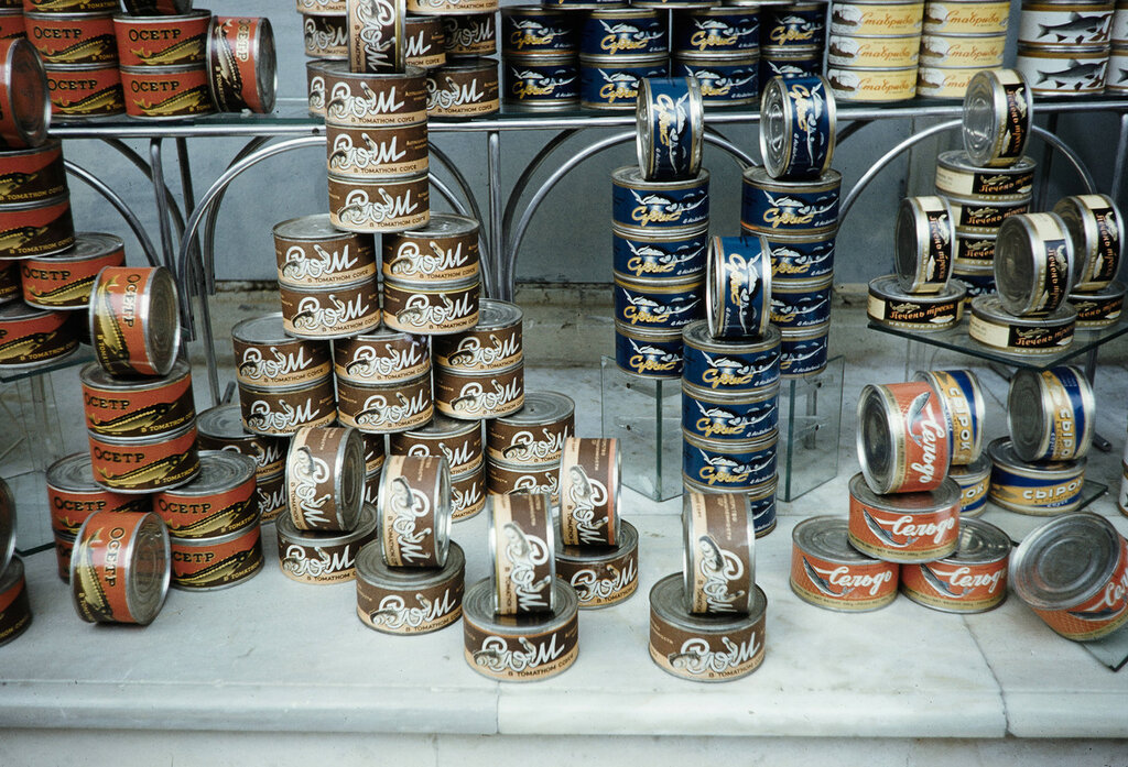Russia, canned goods displayed in store window in Moscow