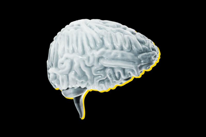 вечная жизнь Кремниевая долина миллиардер мозг цифра
