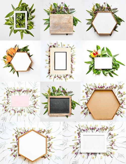 Фоны с цветочными рамками / Backgrounds with flower frames