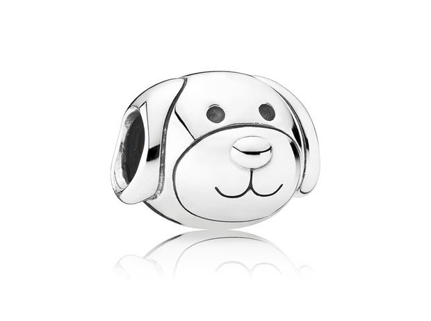 Accessories jewelry pets pins