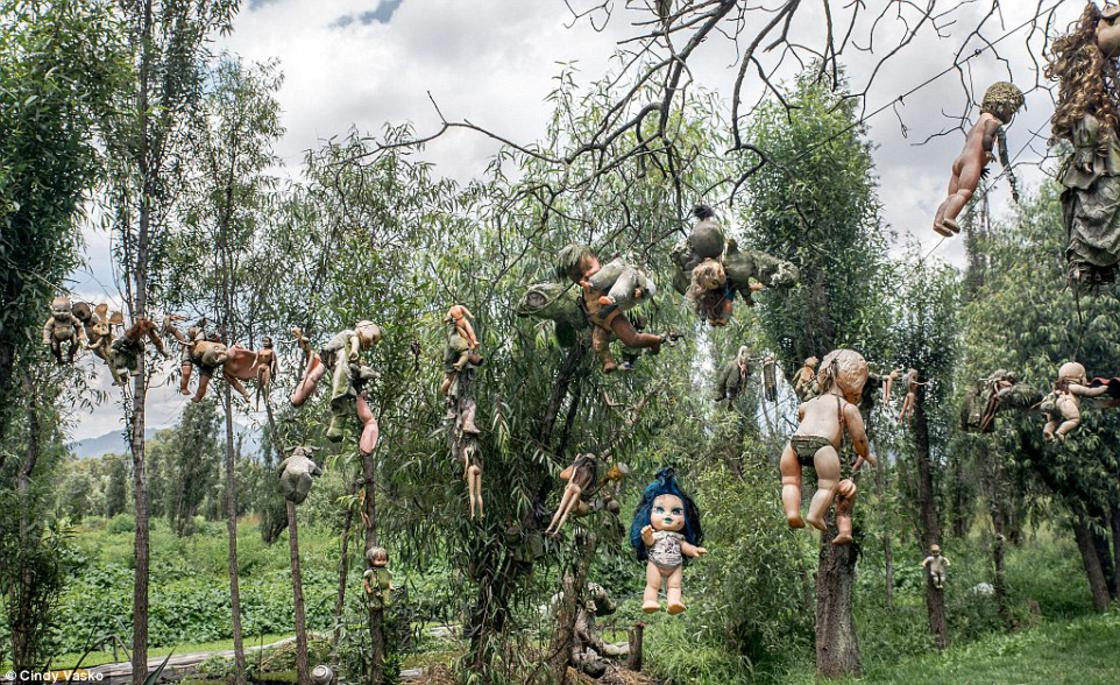 Covered with dolls, this Mexican island is a really frightening place