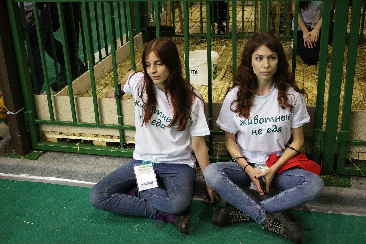 В Москве на выставке АгроФарм-2018 задержали зоозащитников