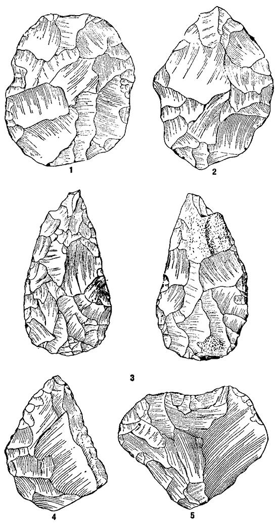 Позднеашельские орудия из обсидиана (Арзни, Армения): 1,2 — овальные ручные рубила; 3 — ручное рубило миндалевидной формы; 4 — остроконечник; 5 — дисковидный нуклеус.
