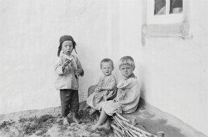 Трое детей возле дома