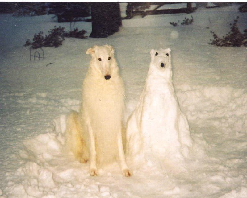 зима снег снеговик