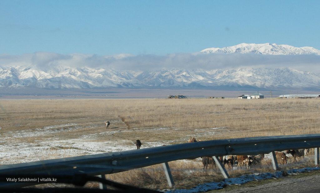 Окраина дороги на Бишкек.