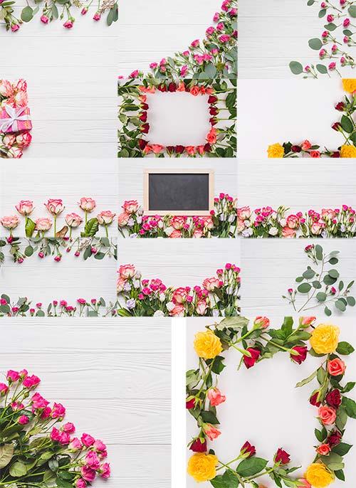 Весенние фоны с розами / Spring backgrounds with roses