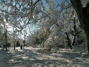 Снегопад 2018 года в Мытищах